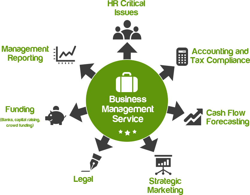 Business management and compliance services
